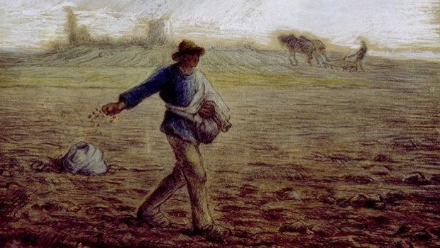 Parable-of-the-Sower-10-11-13-620x350